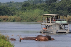 7-Days-Best-of-Uganda-Safari