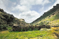 Mt.-Elgon-National-Park
