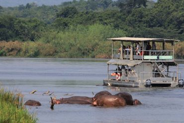 7 Days Best of Uganda Safari